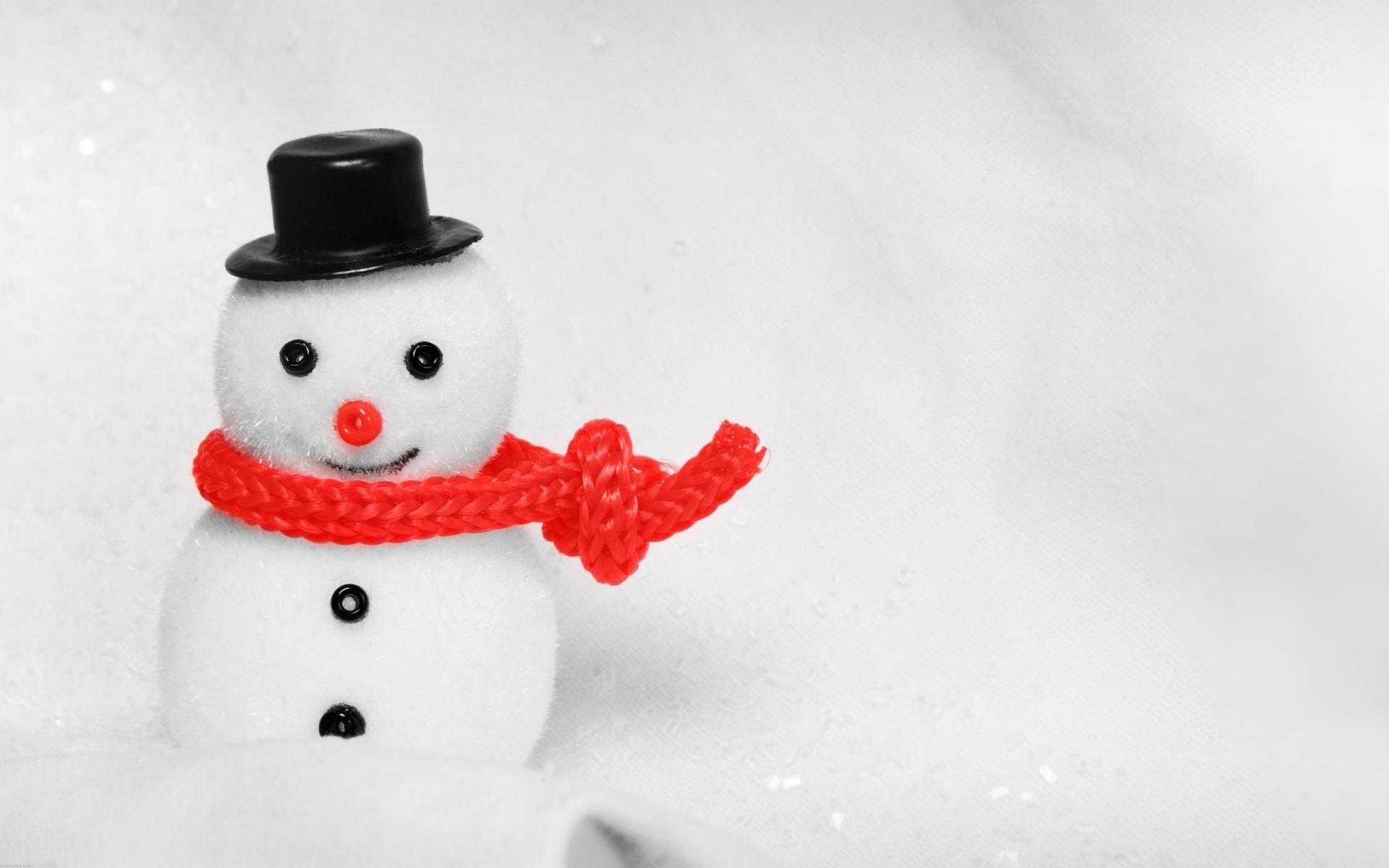 маленькие снеговики картинки перламутру причисляют