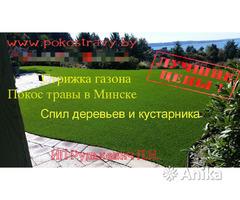 Скарификация(вычесывание),  газона  Минске